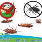 كيفيه التخلص من الصراصير