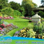 اللاند سكيب ونباتات الزينة